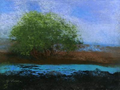 Turquoise Mirage Pastel